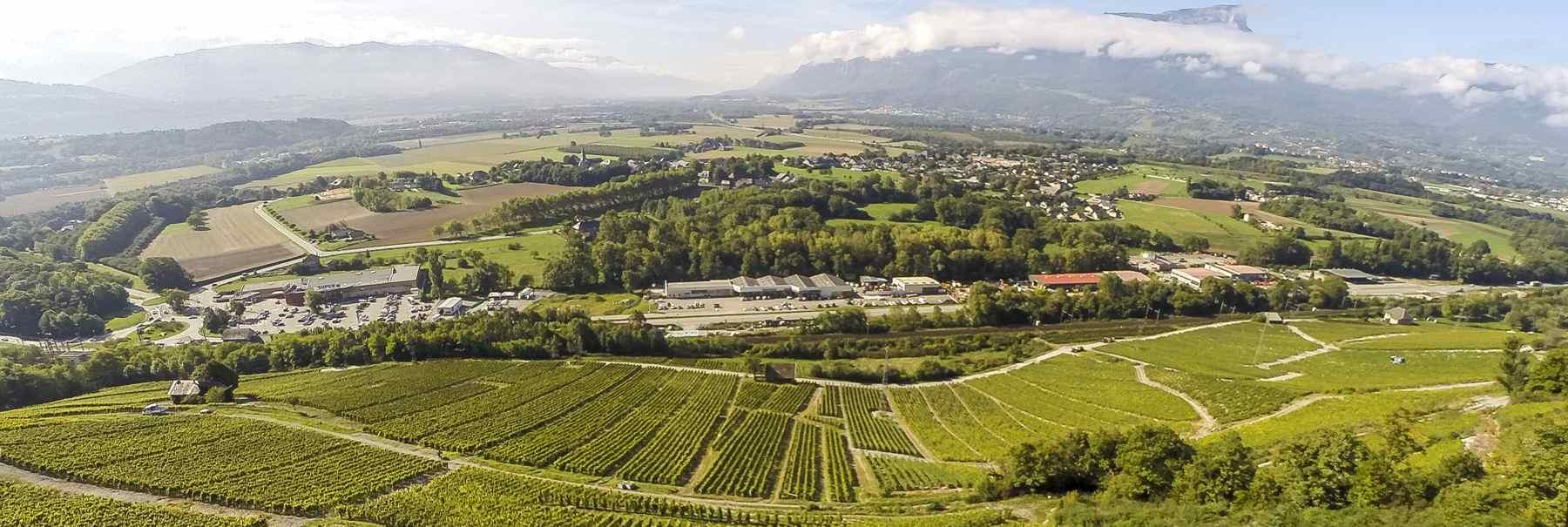 domaine-berthollier-vin-de-savoie-entrepot-du-vin-3